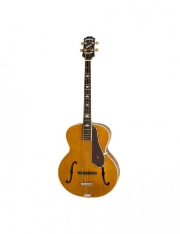 ROLAND GR55S BK Guitar...