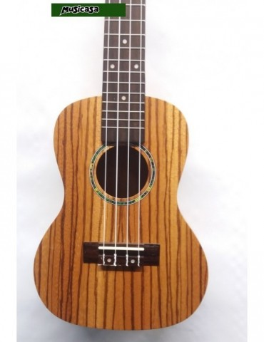 Buffet E-11 Requinto