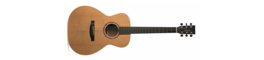 guitarra acustica concert