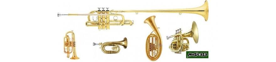 Instrumentos de viento cofradía
