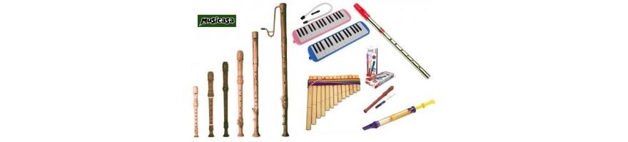 instrumentos viento escolar. Flautas dulces, de émbolo, melódicas,  si