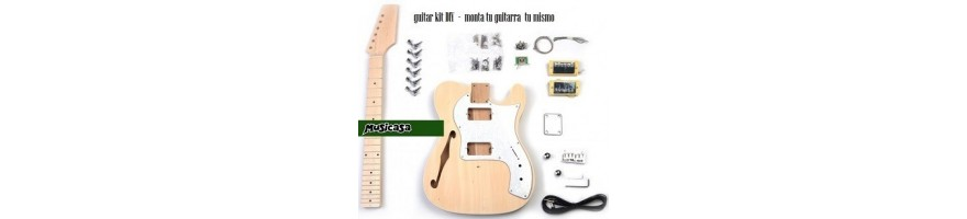 guitar kit DIY