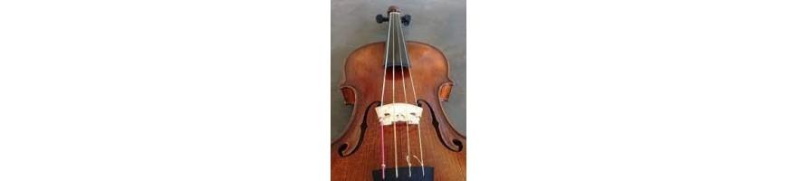 cuerdas barroco