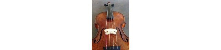 cuerdas violín barroco