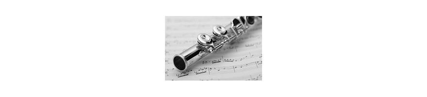 flautas cabeza, cuerpo y llaves de plata